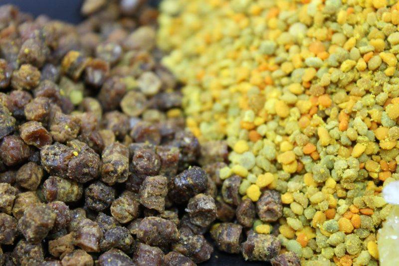 pastura vs polen